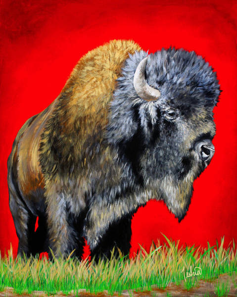 Crimson Painting - Buffalo Warrior by Teshia Art