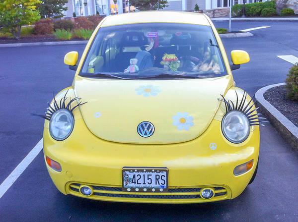 Photograph - Bug-eyes by Guy Whiteley