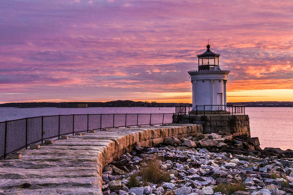 Photograph - Bug Light by Colin A Chase