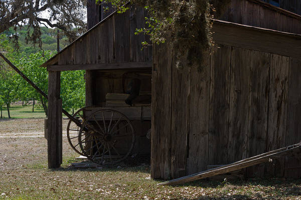 Photograph - Buggy And Barn by Ed Gleichman