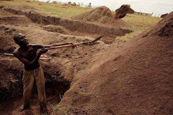 Shovel Photograph - Building Houses by Mauro Fermariello/science Photo Library