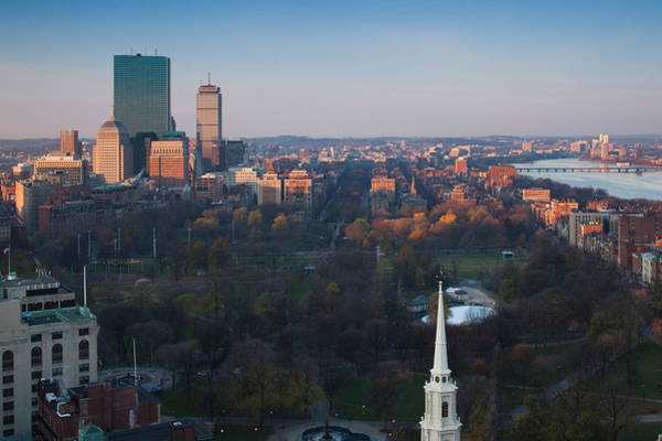Wall Art - Photograph - Buildings In A City, Boston Common by Panoramic Images