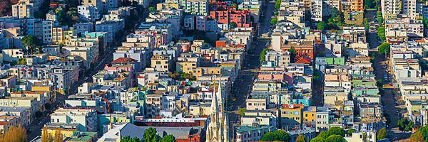 Coit Tower Photograph - Buildings In A City Viewed by Panoramic Images