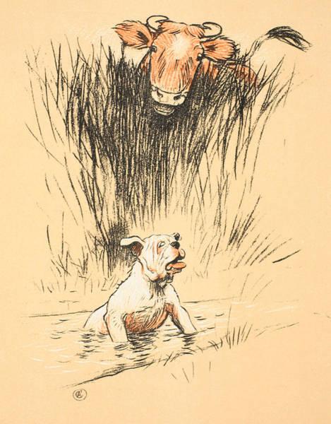 Bull And Dog In Field Art Print