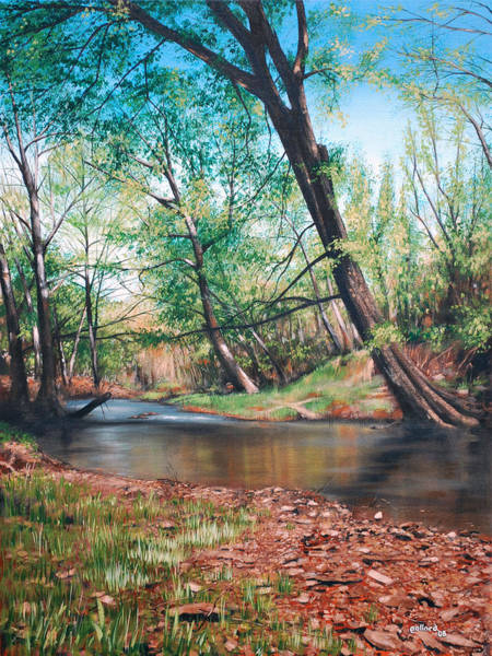 Painting - Bull Creek by Glenn Pollard
