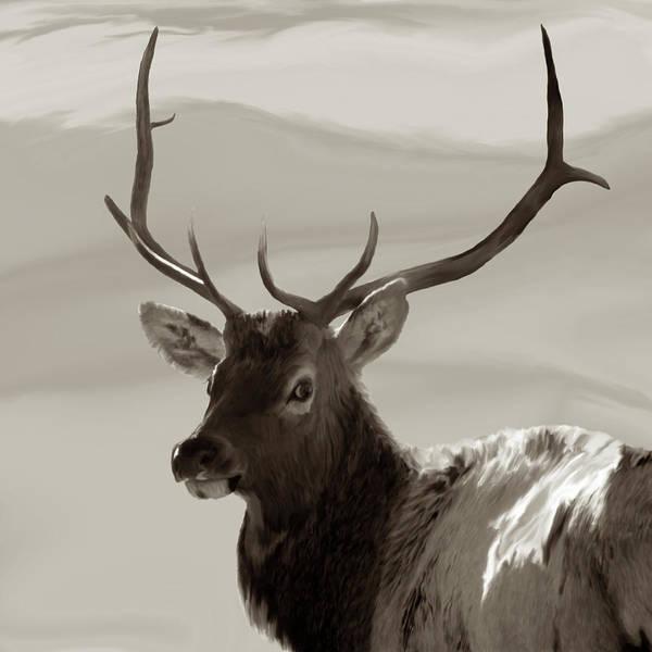 Colorado Wildlife Digital Art - Bull Elk Freehand Sepia by Ernie Echols