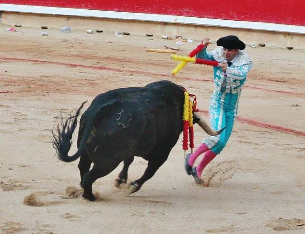 Toreador Photograph - Bull Fight 2 by Christopher Hoffman