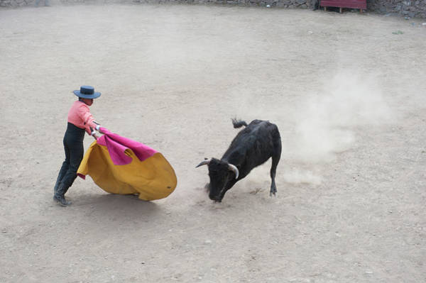 Matador Photograph - Bull Fighting, Ollantaytambo, Urubamba by Animal Images