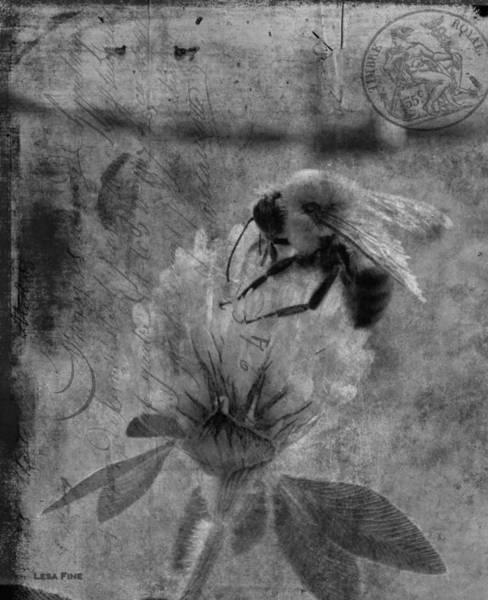 Photograph - Bumble Bee Post Card 2 Bw by Lesa Fine