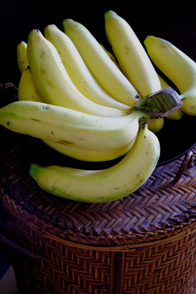 Photograph - Bunch Of Bananas by August Timmermans