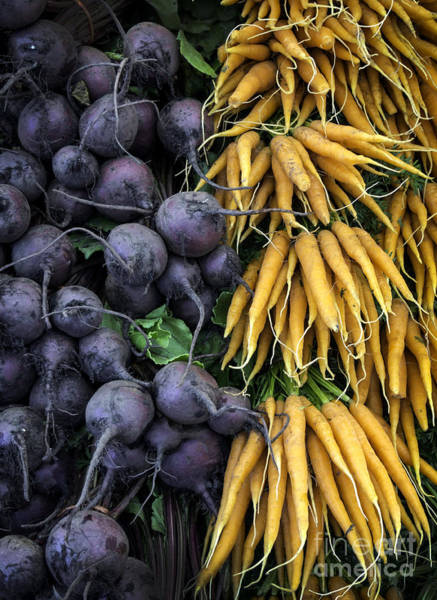 Purple Carrot Photograph - Bunch Of Carrots And Beetroot by Frank Bach