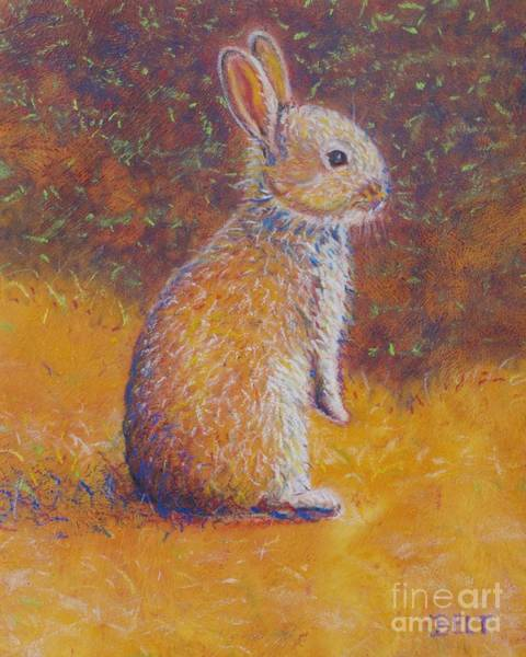 Wall Art - Pastel - Bunny At Snickerhaus Garden by Christine Belt
