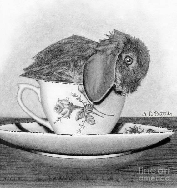 Hand Drawn Drawing - Bunny In A Tea Cup by Sarah Batalka
