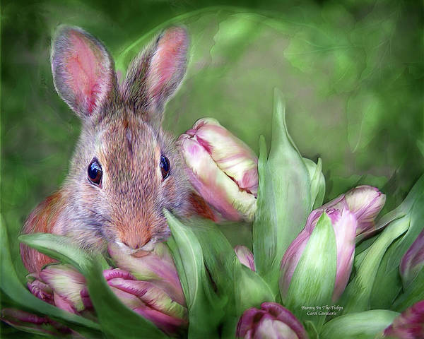 Mixed Media - Bunny In The Tulips by Carol Cavalaris