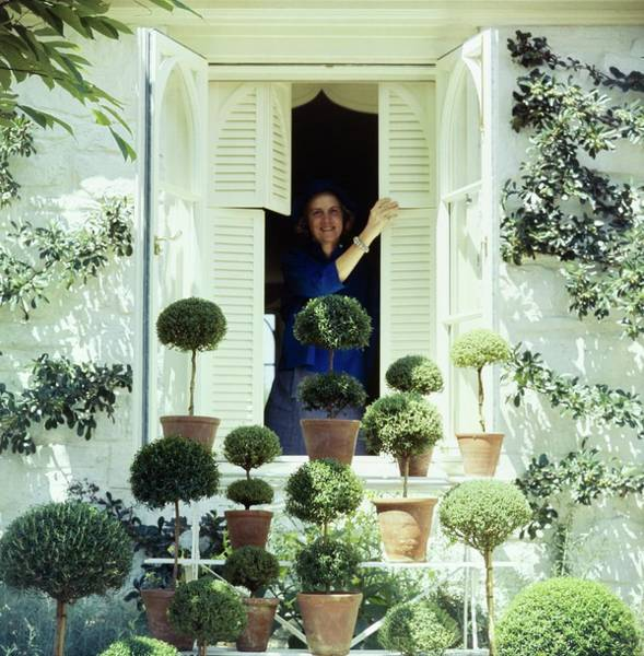 Shutters Photograph - Bunny Mellon By Her Potted Trees by Horst P. Horst
