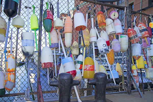 Chain Link Photograph - Buoys by Betsy Knapp