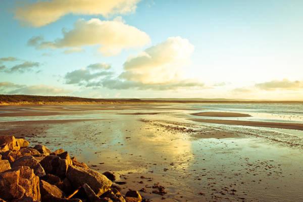 Kelp Photograph - Burghead Beach by Tom Gowanlock