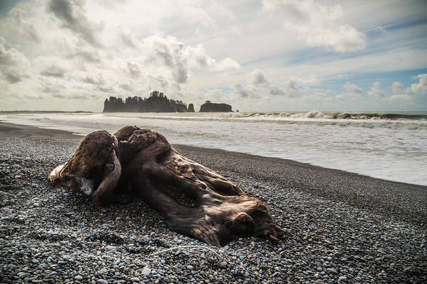 Photograph - Buried by Kristopher Schoenleber