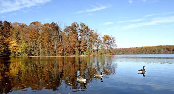 Wall Art - Photograph - Burke Lake Park In Fairfax Virginia by Brendan Reals