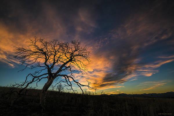 Photograph - Burned by Jeff Niederstadt