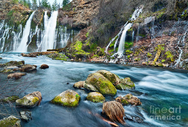 Plunge Photograph - A Thousand Falls by Jamie Pham