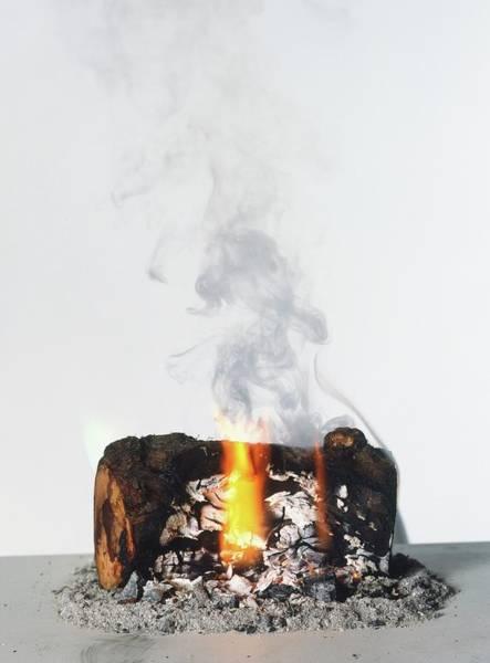 Physics Photograph - Burning Log by Dorling Kindersley/uig