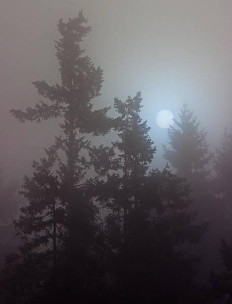 Photograph - Burning Through The Fog by Randy Hall