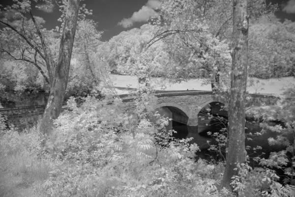 Photograph - Burnside Bridge 0237 by Guy Whiteley