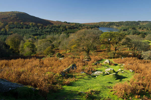 Photograph - Burrator And Sheeps Tor by Pete Hemington