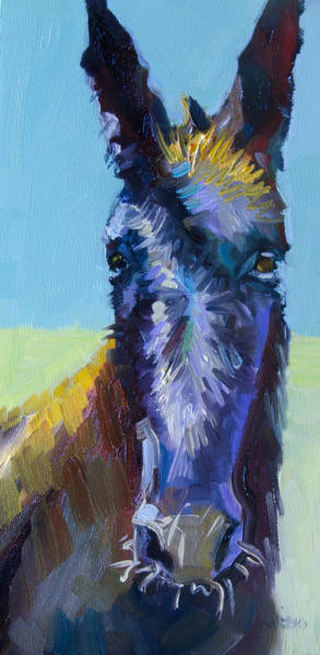 Donkey Painting - Burro Stare by Diane Whitehead