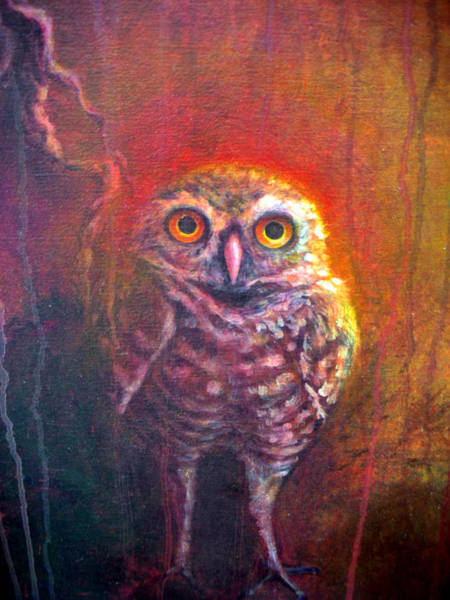 Painting - Burrowing Owl by Ashley Kujan