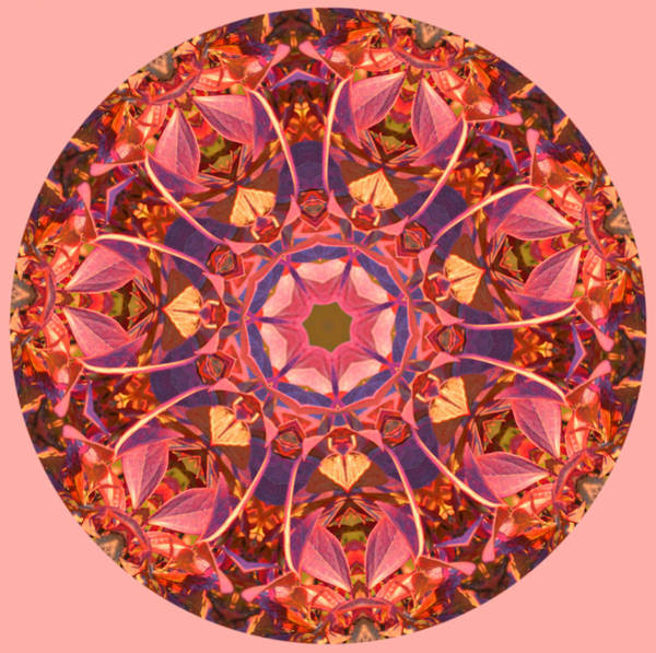 Burst Of Fall Mandala Art Print