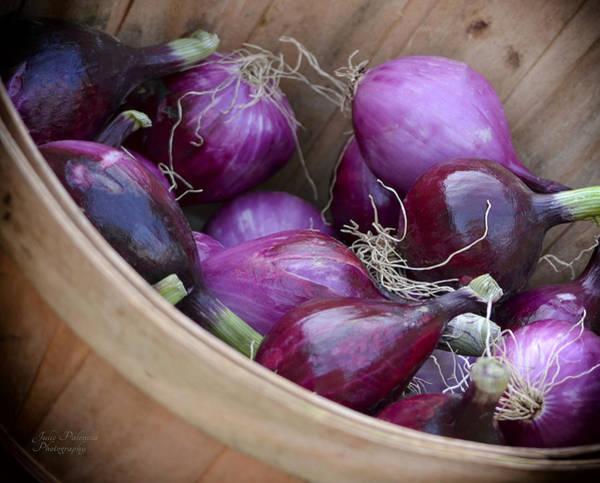 Bushel Of Red Onions Farmers Market Art Print