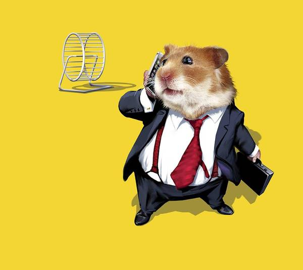 Hamster Photograph - Business Lifestyle, Conceptual Artwork by Science Photo Library