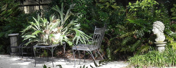 Staghorn Fern Photograph - Bust In A Garden With Staghorn Fern by Patricia Greer