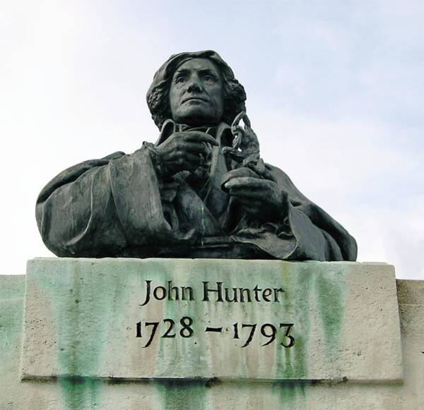 Wall Art - Photograph - Bust Of John Hunter by Cordelia Molloy/science Photo Library