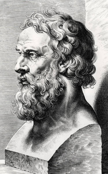 Theorist Wall Art - Drawing - Bust Of Plato  by Lucas Emil Vorsterman