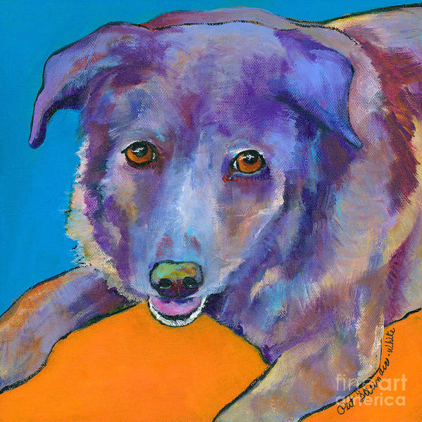 Painting - Butch by Pat Saunders-White