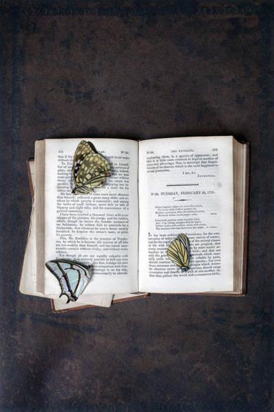 Wall Art - Photograph - Butterflies On Book by Joana Kruse