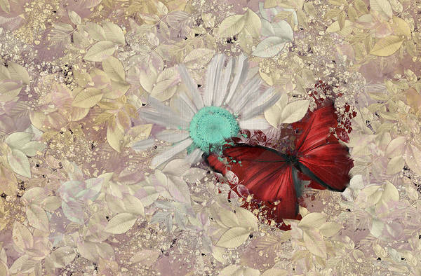 White Butterfly Digital Art - Butterfly And Daisy - S3001a by Variance Collections