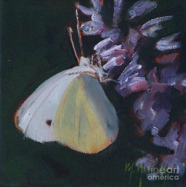 Cabbage White Painting - Butterfly And Lavender by Mary Hubley