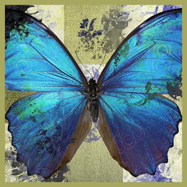 Wall Art - Digital Art - Butterfly Art - S01bfr02 by Variance Collections