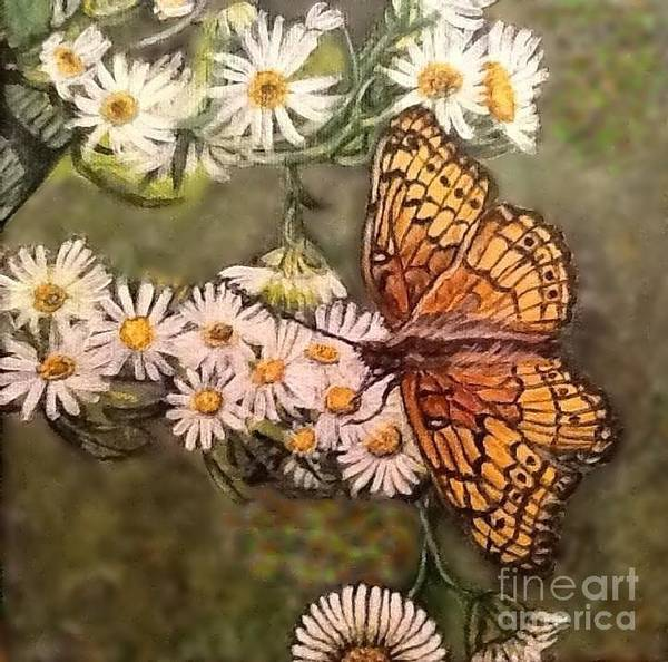 Mottled Mixed Media - Butterfly Delight by Kimberlee Baxter