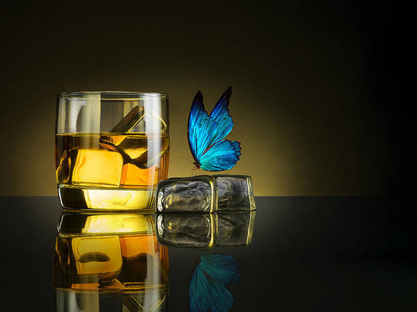 Whiskey Wall Art - Photograph - Butterfly Drink by Jackson Carvalho