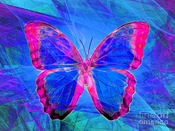 Photograph - Butterfly Dsc2969p32 by Wingsdomain Art and Photography