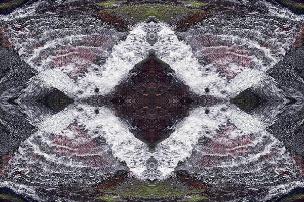 Photograph - Butterfly Effect by Dawn J Benko