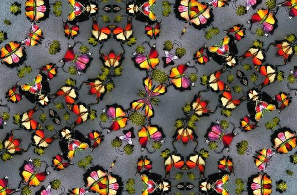 Digital Art - Butterfly Exodus by Alec Drake