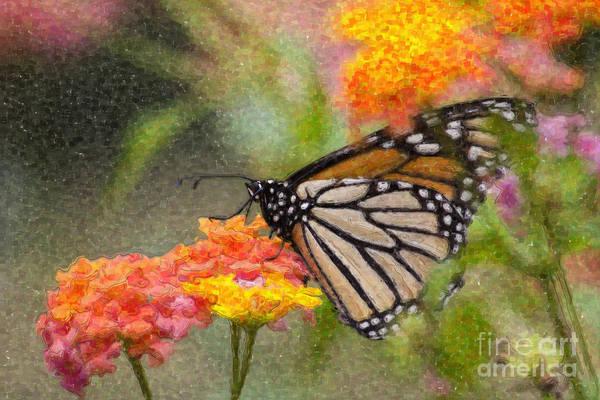 Digital Art - Butterfly Feeding On Lantana by Jill Lang