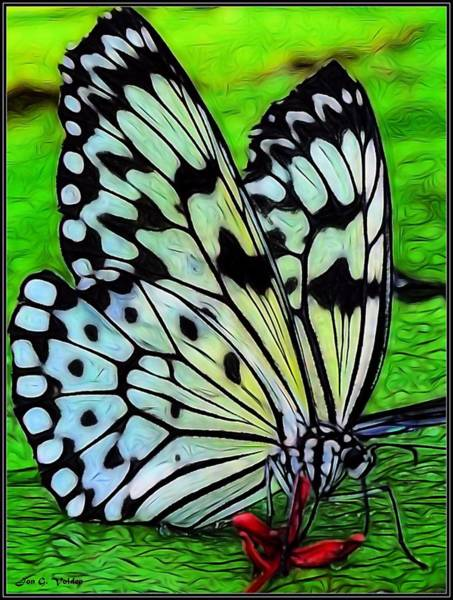 Painting - Butterfly On A Lily Pad by Jon Volden