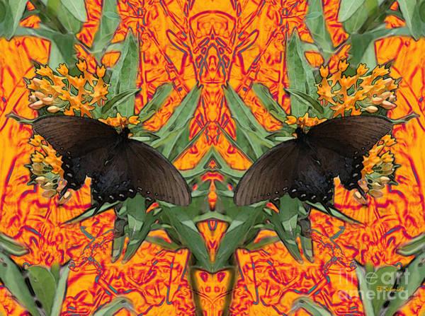 Digital Art - Butterfly Reflections 06 - Spicebush Swallowtail by E B Schmidt